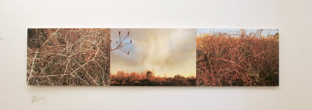 Sunset Triptych Chris Page art