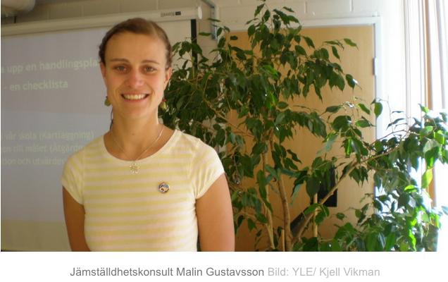 Få jämställdhetsplaner uppfyller lagen  (Svenska Yle, 5.8.2015)