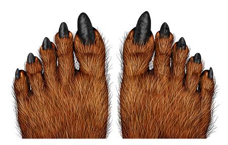 42846556_S_scary_feet_werewolf_hairy_nails.jpg
