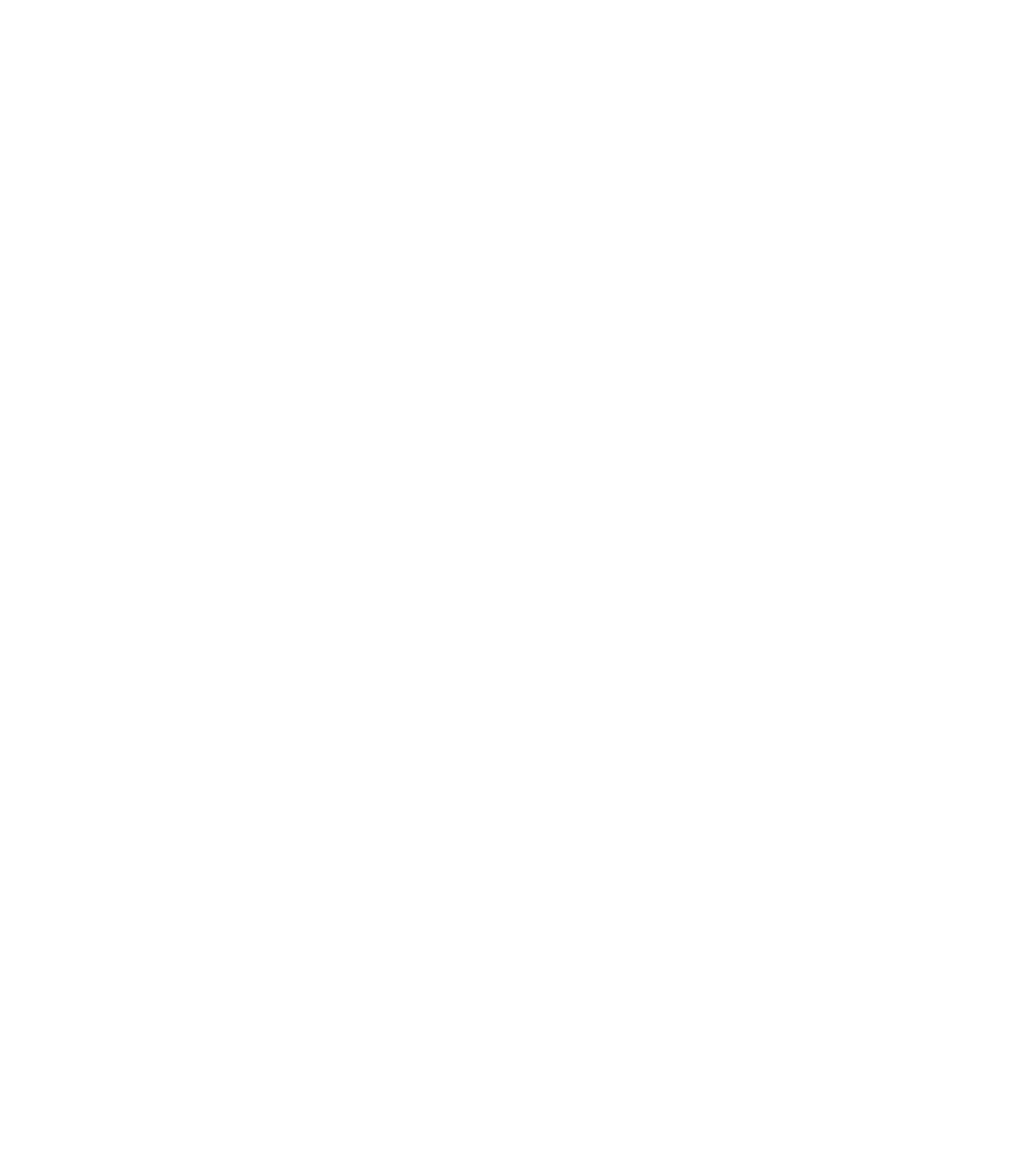 SOLO Music Gallery