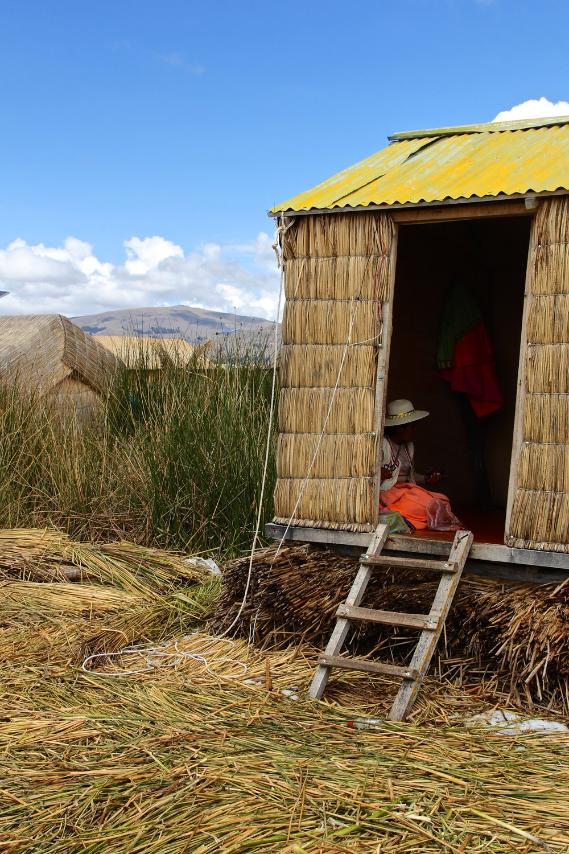 Peru 8665.jpg