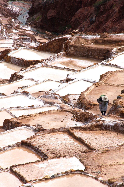 Peru 8686.jpg