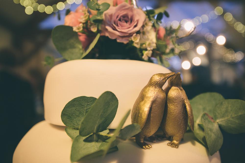nancarrow-wedding-photography-154.jpg