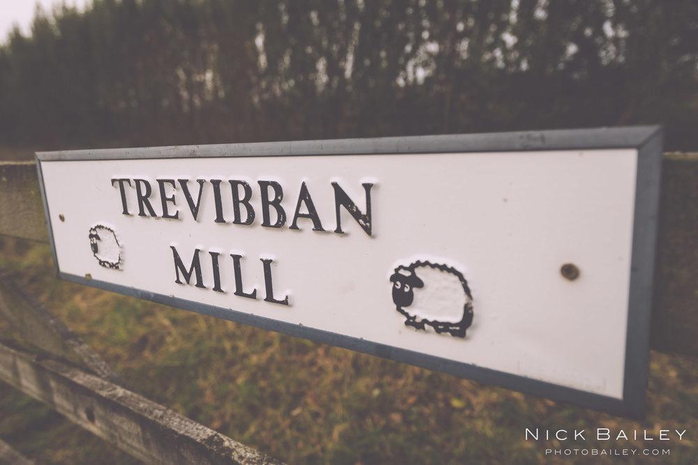 trevibban-mill-wedding-5.jpg
