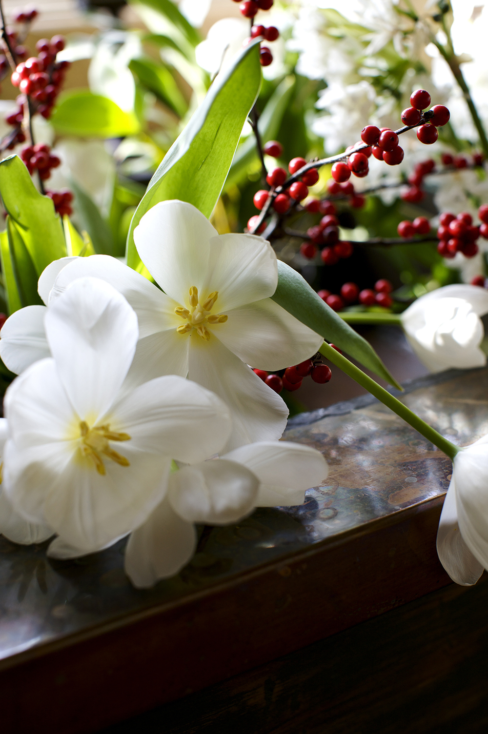 tulips and winterberry.jpg