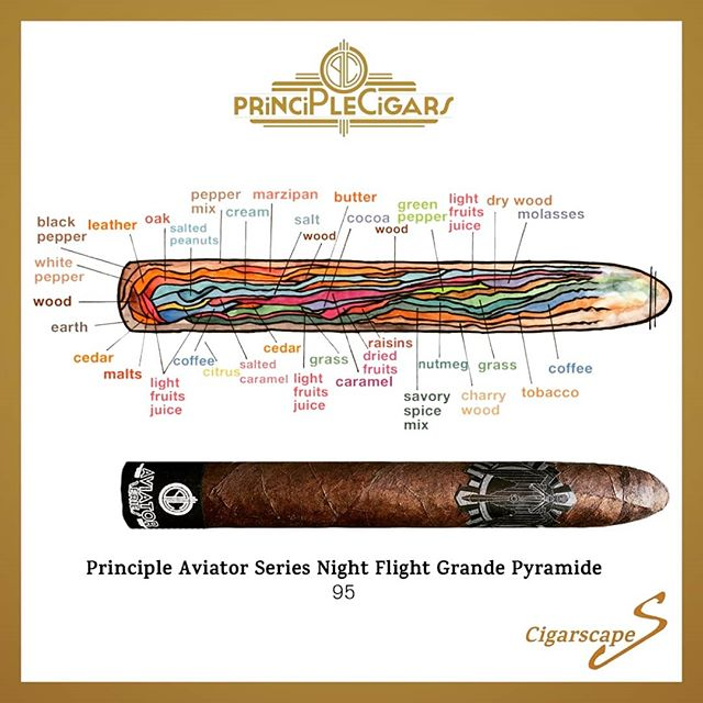 A stunning visual review of the #AviatorSeries #NightFlight #GrandePyramide (available in Germany exclusively at @dalayzigarren) by @cigarscape! Check them out for a truly unique perspective on #Cigar #tasting. #Cigars #시가 #雪茄 #цигара #Sayujar #Sigaar #Sigari #Cigare #Zigarre #葉巻 #Sigaro #Cigārs #Cigara #Trabuc #Cygaro #сигара #Cigarro #Cigarr #Sigar #Puro #CigarScape #CigarLife #BOTL #SOTL #PrincipleCigars