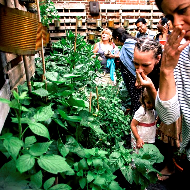 Students at a herbal workshop in a community garden in Brooklyn