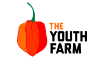 The Youth Farm, Brooklyn