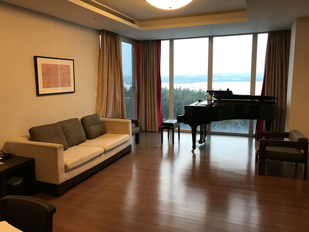Festival accommodation - an apartment with my own grand piano