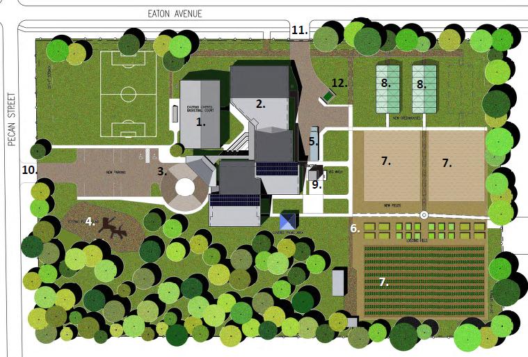 Woodlandplan.jpg