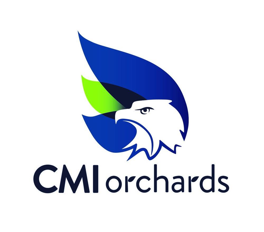 CMI.jpg