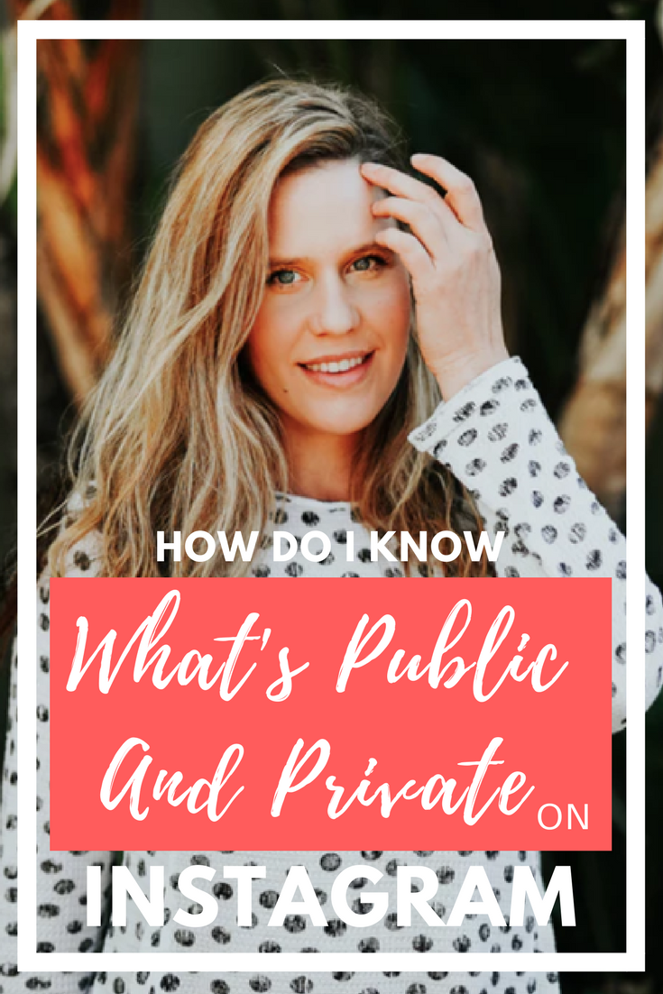 how+do+i+know+what+is+public+and+private+on+instagram.png