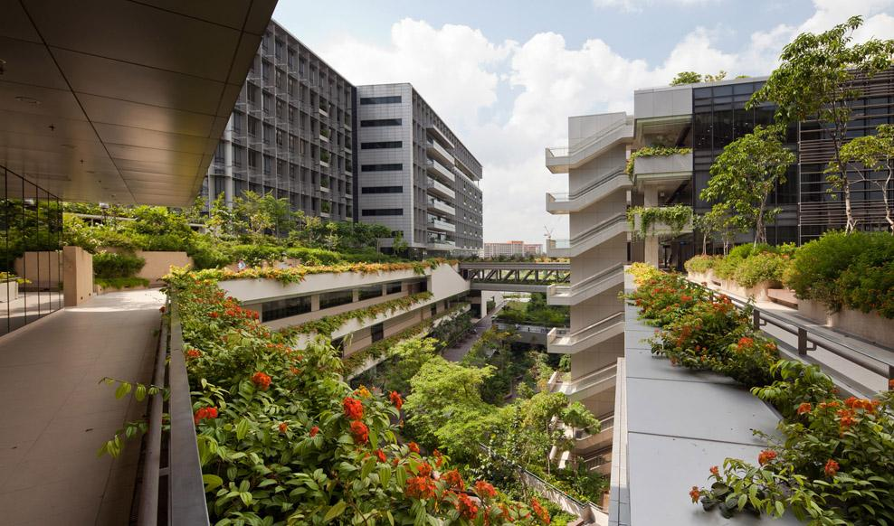 Khoo Teck Puat Hospital employs biophilia