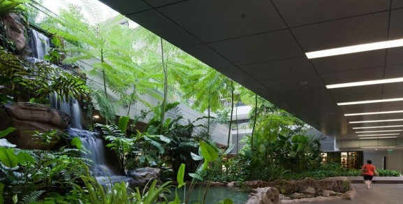 Khoo Teck Puat Hospital waterfall
