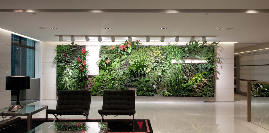 An office in Hong Kong with a greenwall