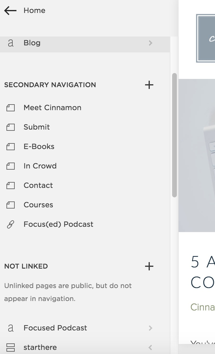 can I have two different blogs in Squarespace?