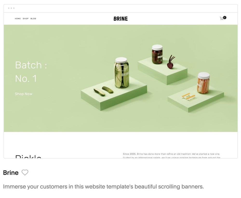 Brine template Squarespace for photographers