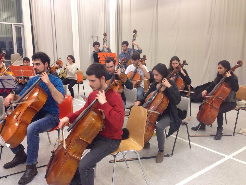 Secció de cellos de la Tekhné