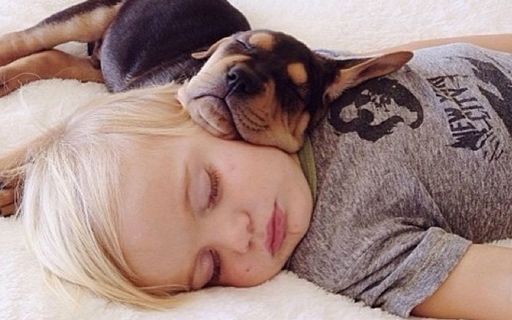 Theo and Beau, the cutest nappers ever, from mommasgonecity.com.