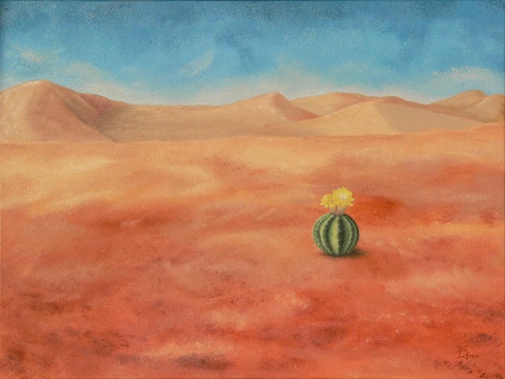 Wüste mit Kaktus, 09/2007