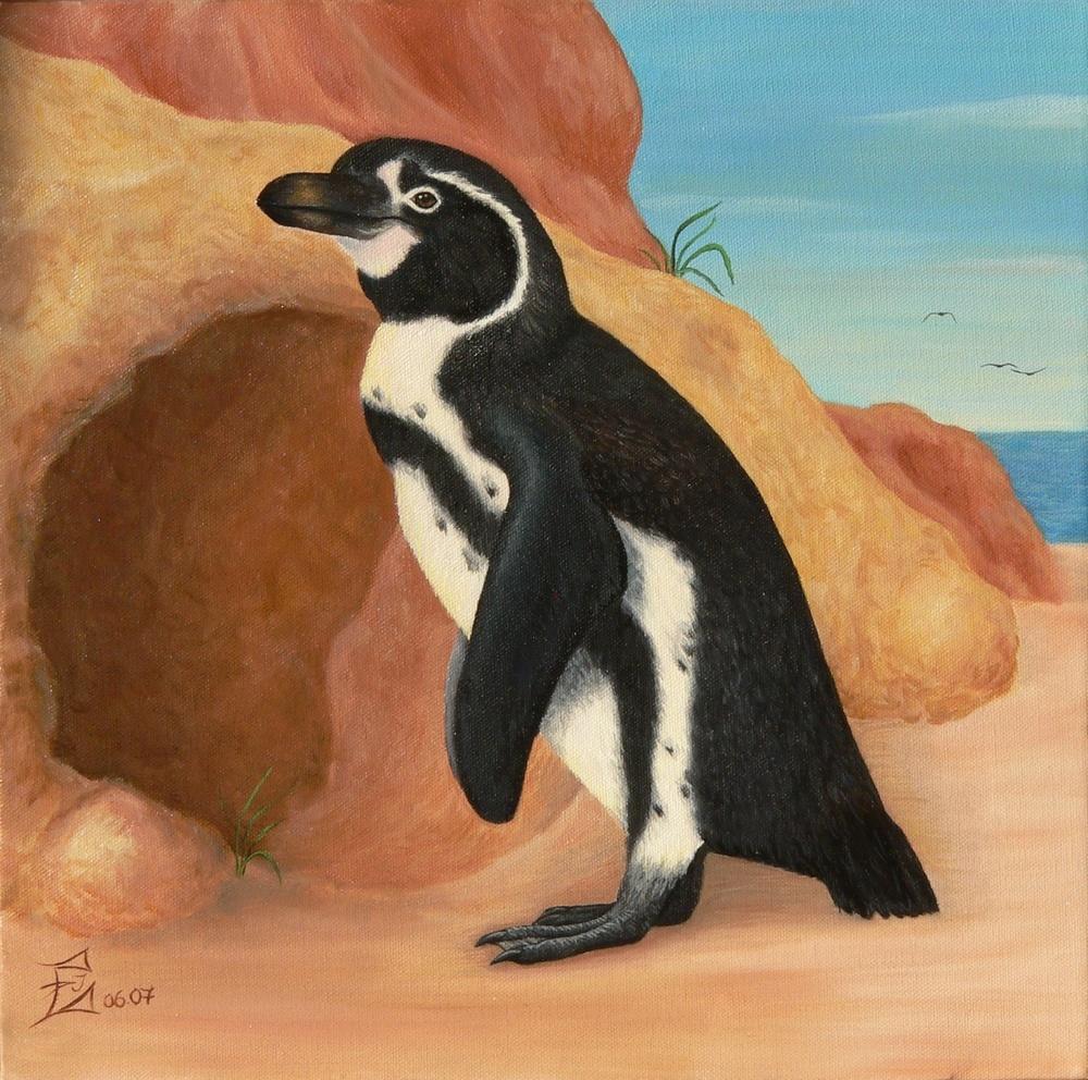 Pinguin I, 06/2007