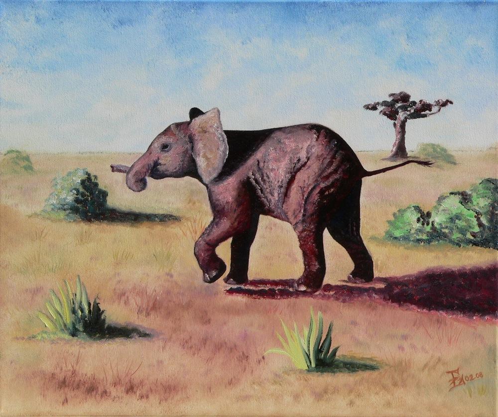 Kleiner Elefant, 02/2008