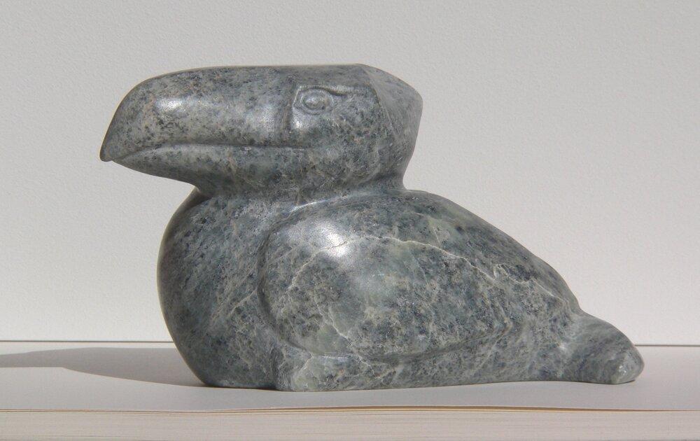 Vogel (4).JPG