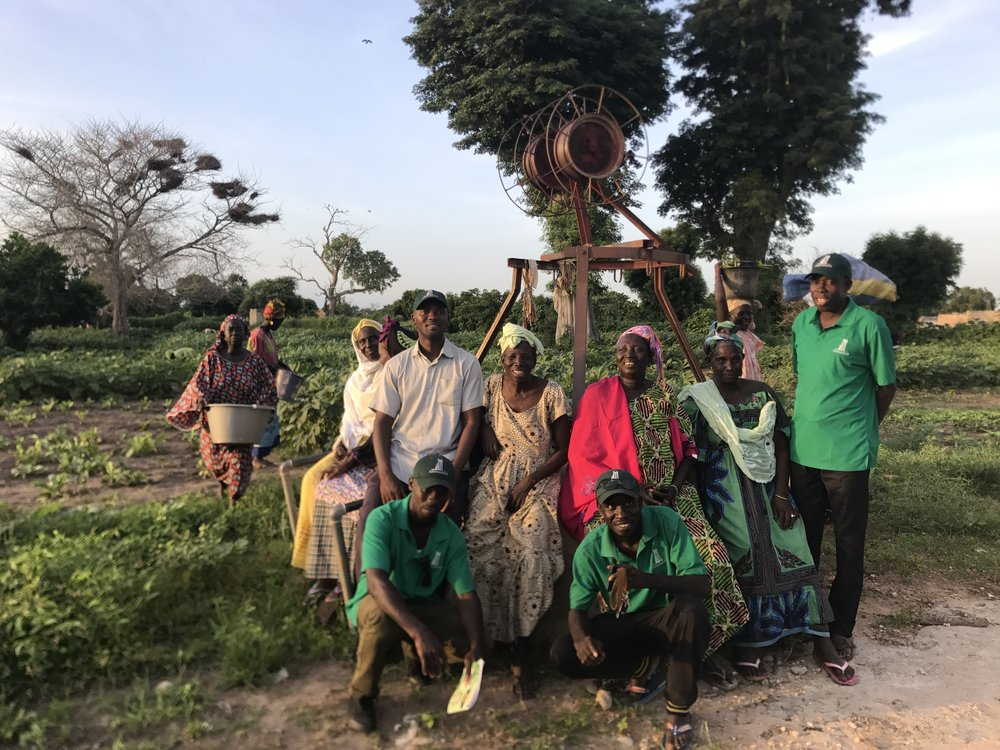 Andando Staff with some member of the Kouthieye Women's Cooperative in their new garden.