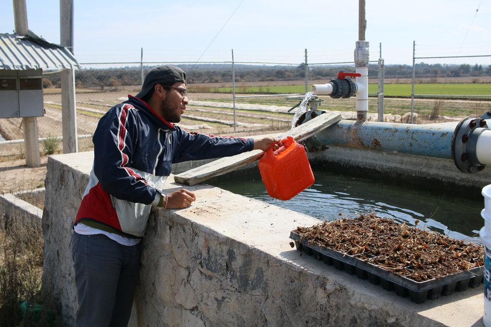 Recomendamos analizar todas las fuentes de agua en su comunidad.