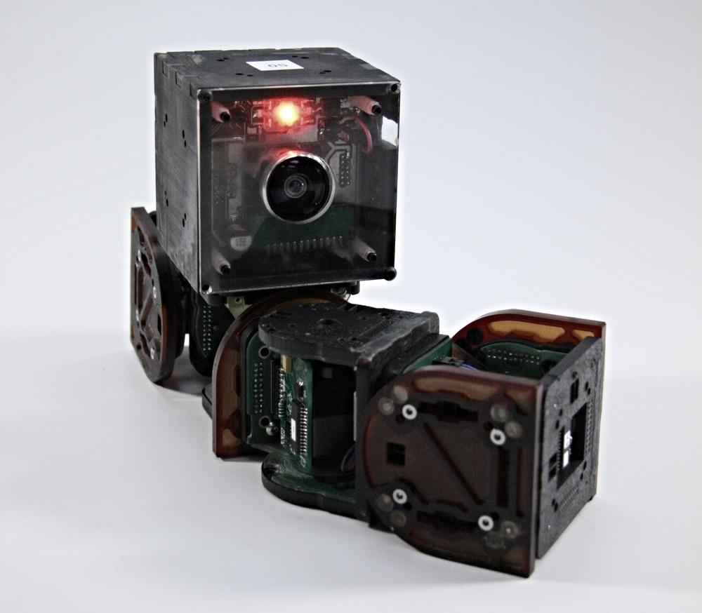 CK-bot.jpg
