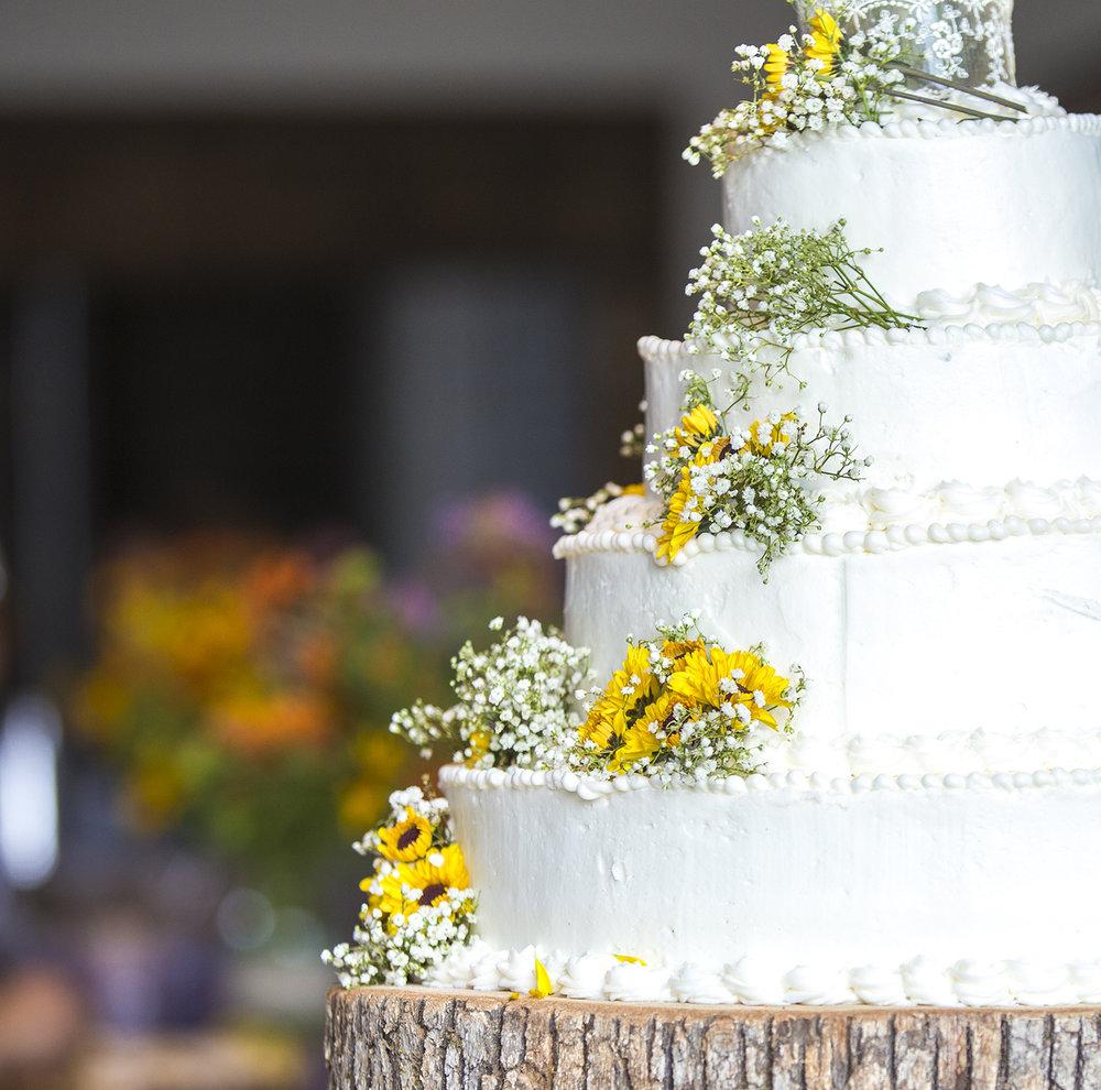 Joshua-Katelyn Wedding Cake Detail