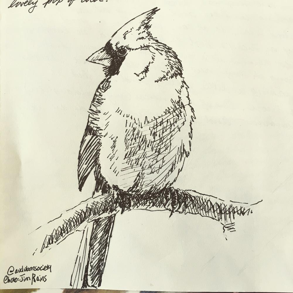 Correspondence Cardinal