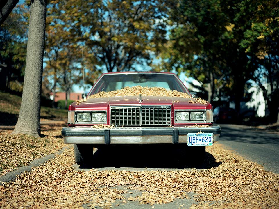 car001.jpg