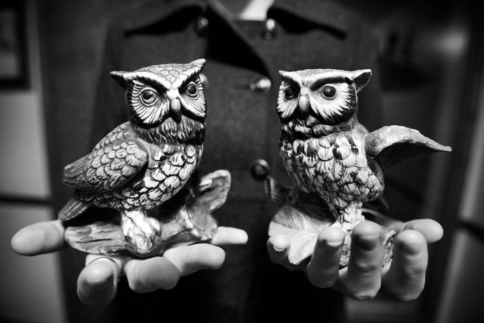 CRV_0049-owl