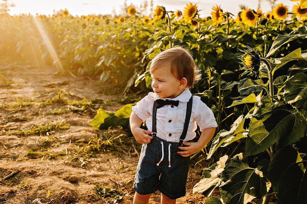 Schreiner-family-lauren-grayson-cleveland-photographer-sunflower-field-session_0001.jpg