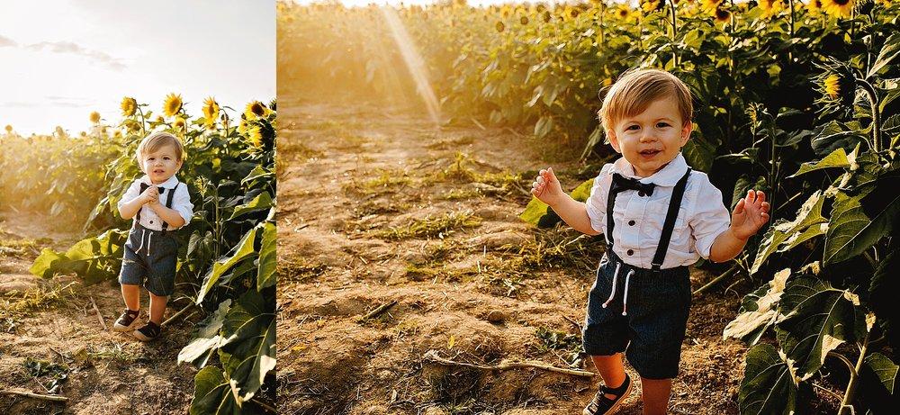 Schreiner-family-lauren-grayson-cleveland-photographer-sunflower-field-session_0003.jpg