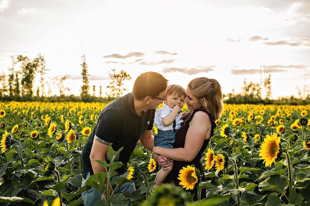 Schreiner-family-lauren-grayson-cleveland-photographer-sunflower-field-session_0007.jpg