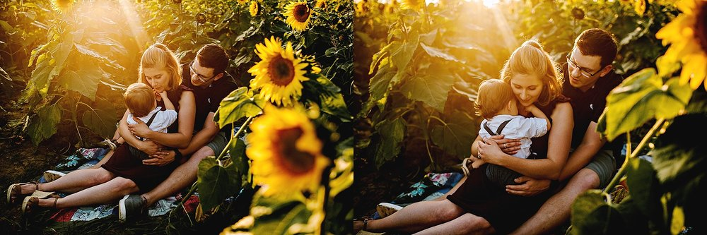 Schreiner-family-lauren-grayson-cleveland-photographer-sunflower-field-session_0015.jpg
