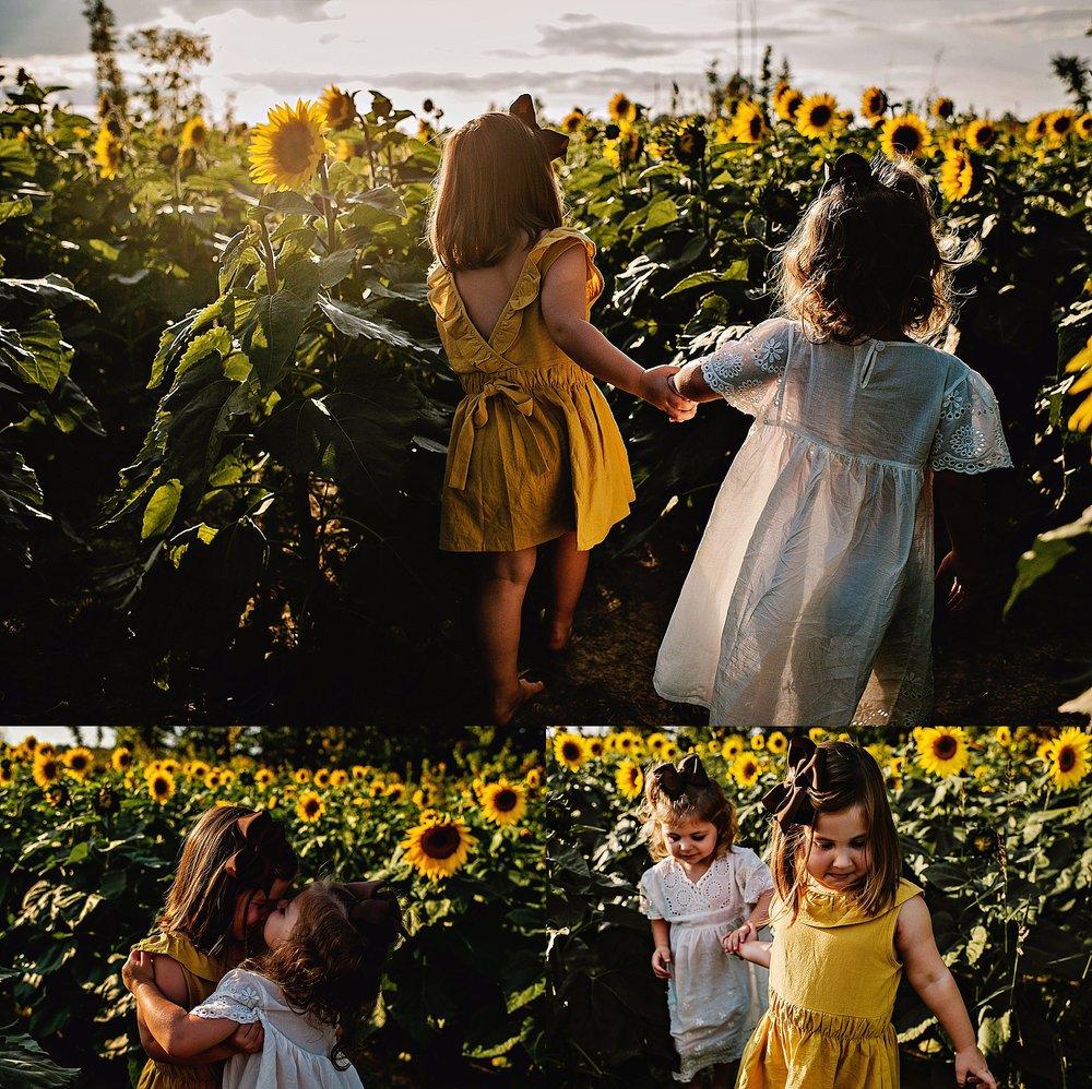Rutherford-family-cleveland-photographer-lauren-grayson-sunflower-field-session_0003.jpg