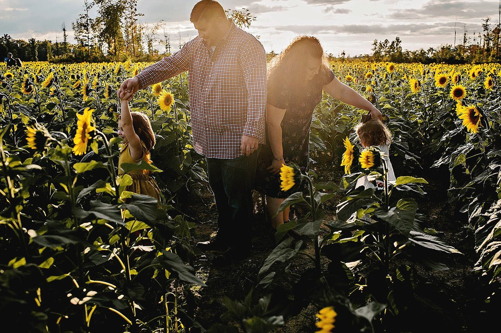 Rutherford-family-cleveland-photographer-lauren-grayson-sunflower-field-session_0008.jpg