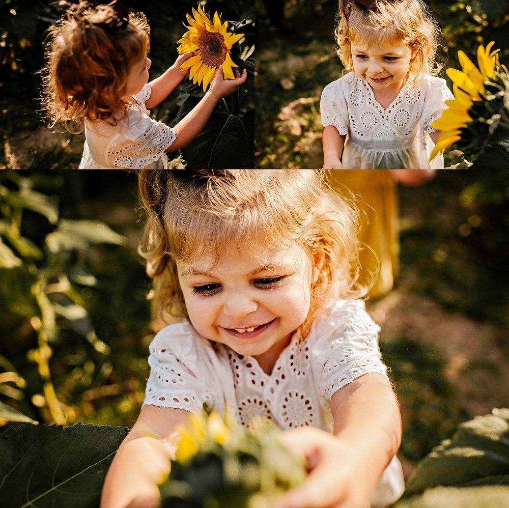 Rutherford-family-cleveland-photographer-lauren-grayson-sunflower-field-session_0010.jpg