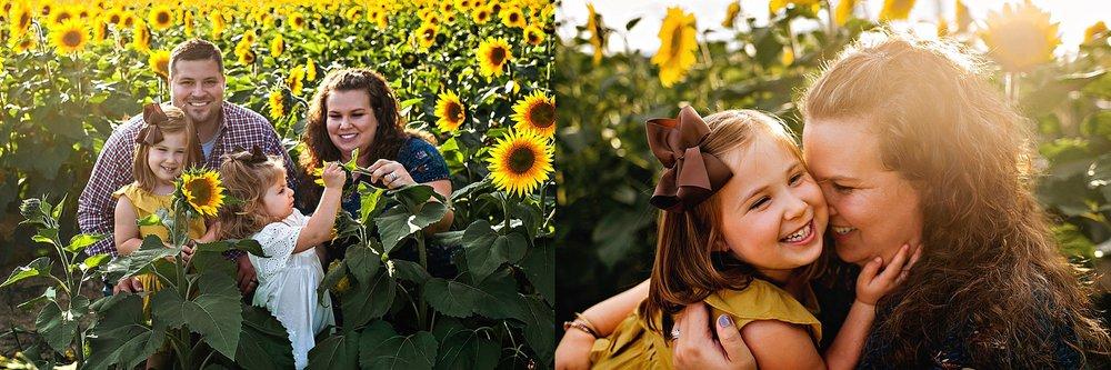 Rutherford-family-cleveland-photographer-lauren-grayson-sunflower-field-session_0012.jpg
