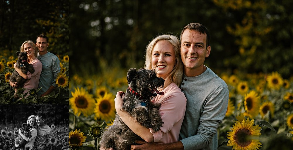 Lori-and-mike-akron-ohio-photographer-lauren-grayson-sunflower-field-session_0002.jpg