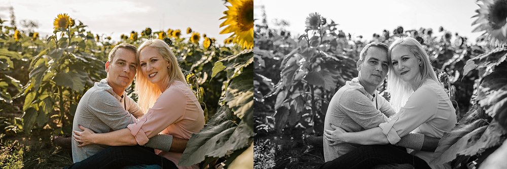 Lori-and-mike-akron-ohio-photographer-lauren-grayson-sunflower-field-session_0014.jpg