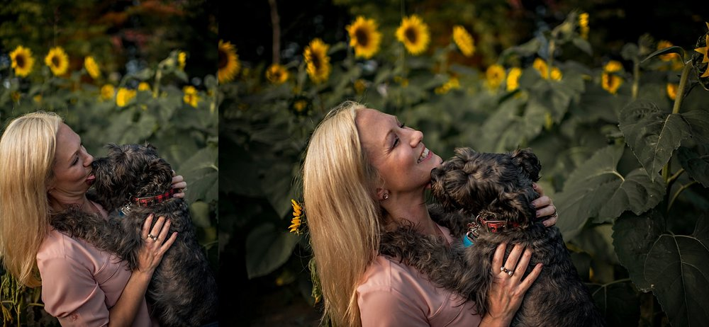 Lori-and-mike-akron-ohio-photographer-lauren-grayson-sunflower-field-session_0023.jpg
