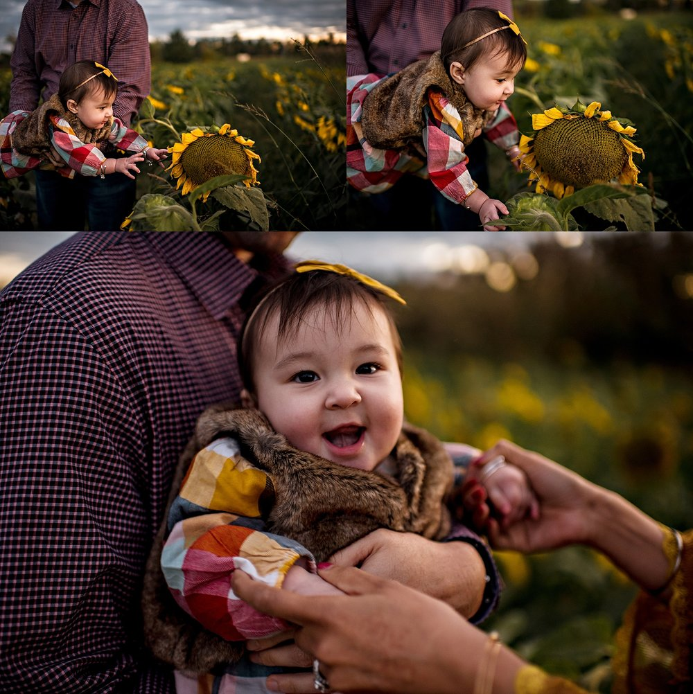 Turner-family-akron-ohio-photographer-lauren-grayson-sunflower-field-session_0028.jpg
