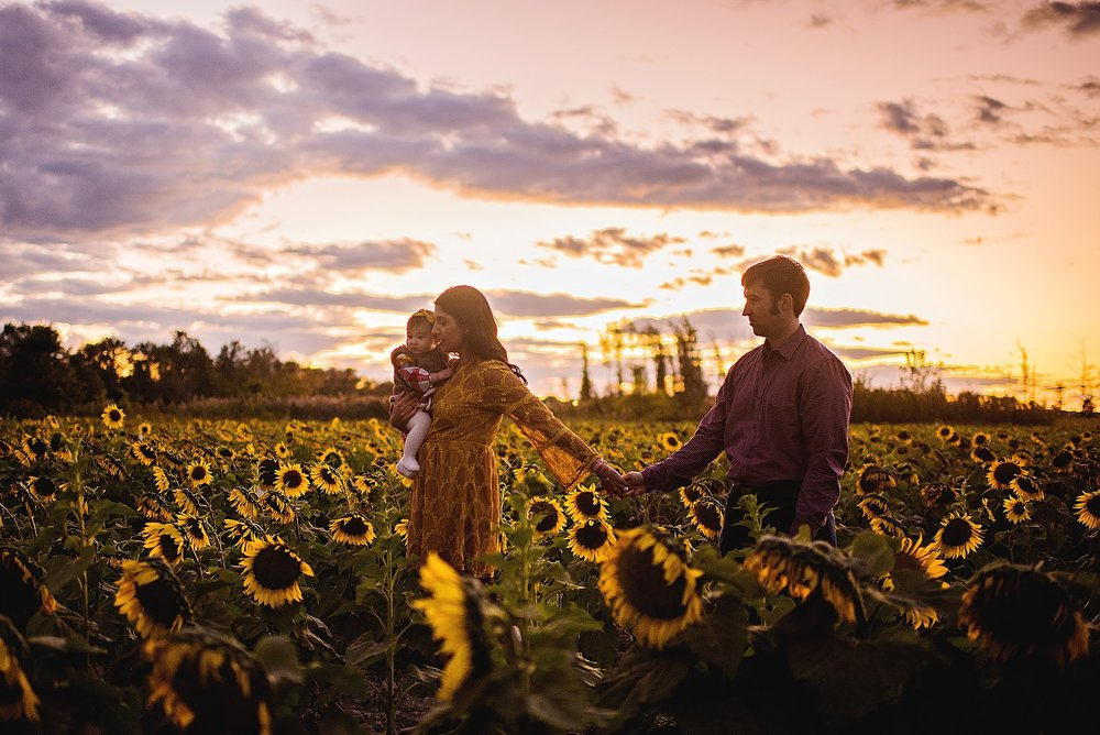 Turner-family-akron-ohio-photographer-lauren-grayson-sunflower-field-session_0031.jpg