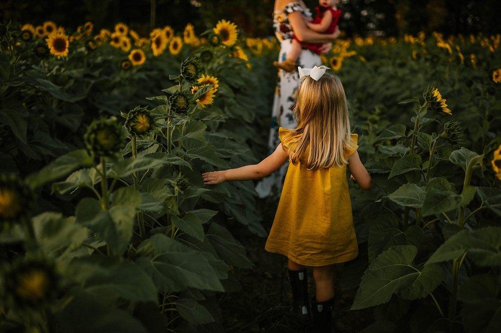 lauren-grayson-photography-cleveland-ohio-photographer-sunflower-fields-sunset-golden-hour-photo-shoot-mommy-and-me-family-child-photographer_0563.jpg