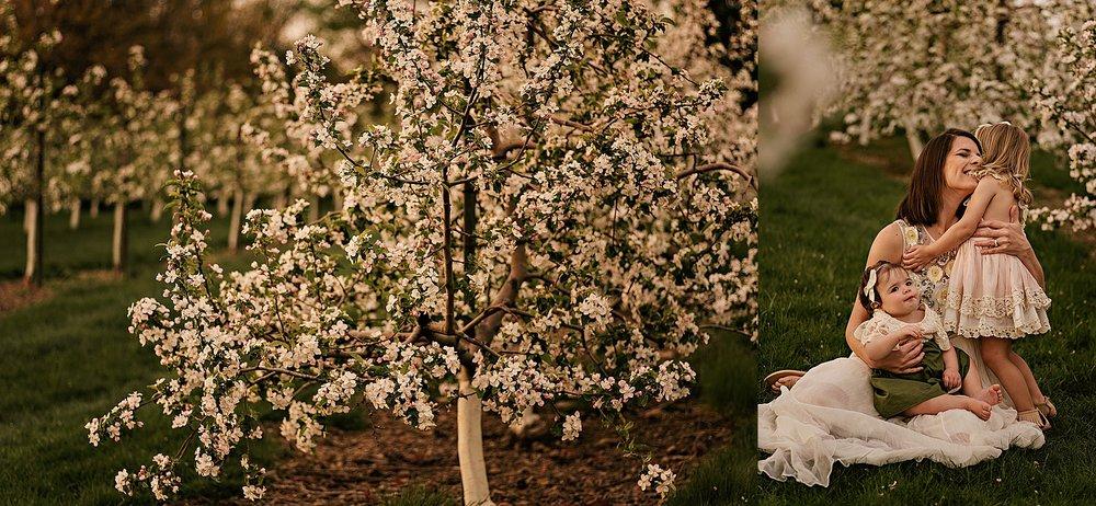 lauren-grayson-photography-akron-ohio-family-photographer-spring-session-apple-orchard_0015.jpg