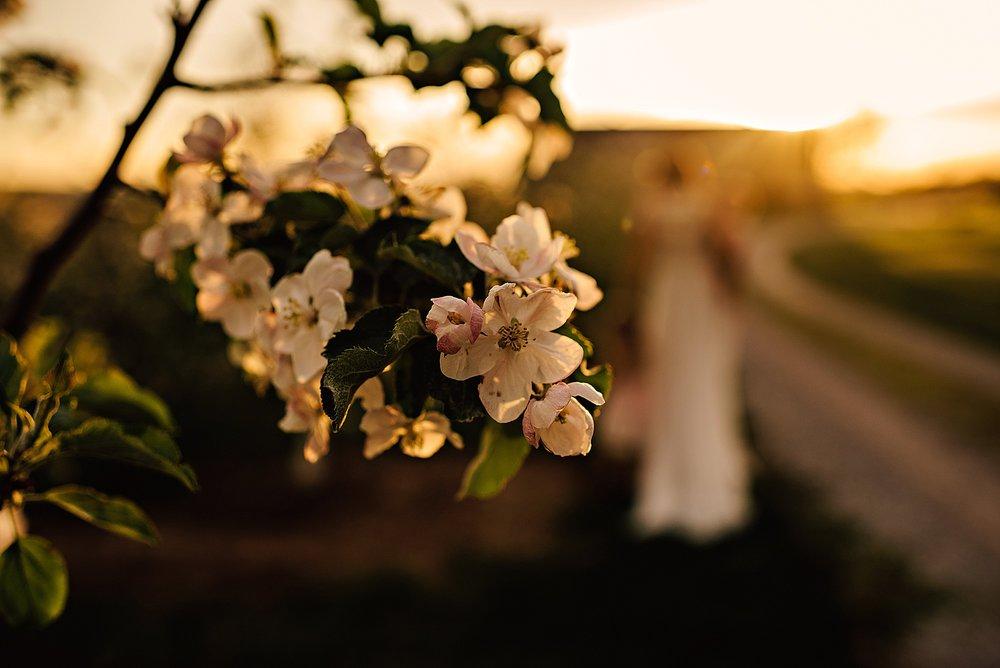 lauren-grayson-photography-akron-ohio-family-photographer-spring-session-apple-orchard_0013.jpg